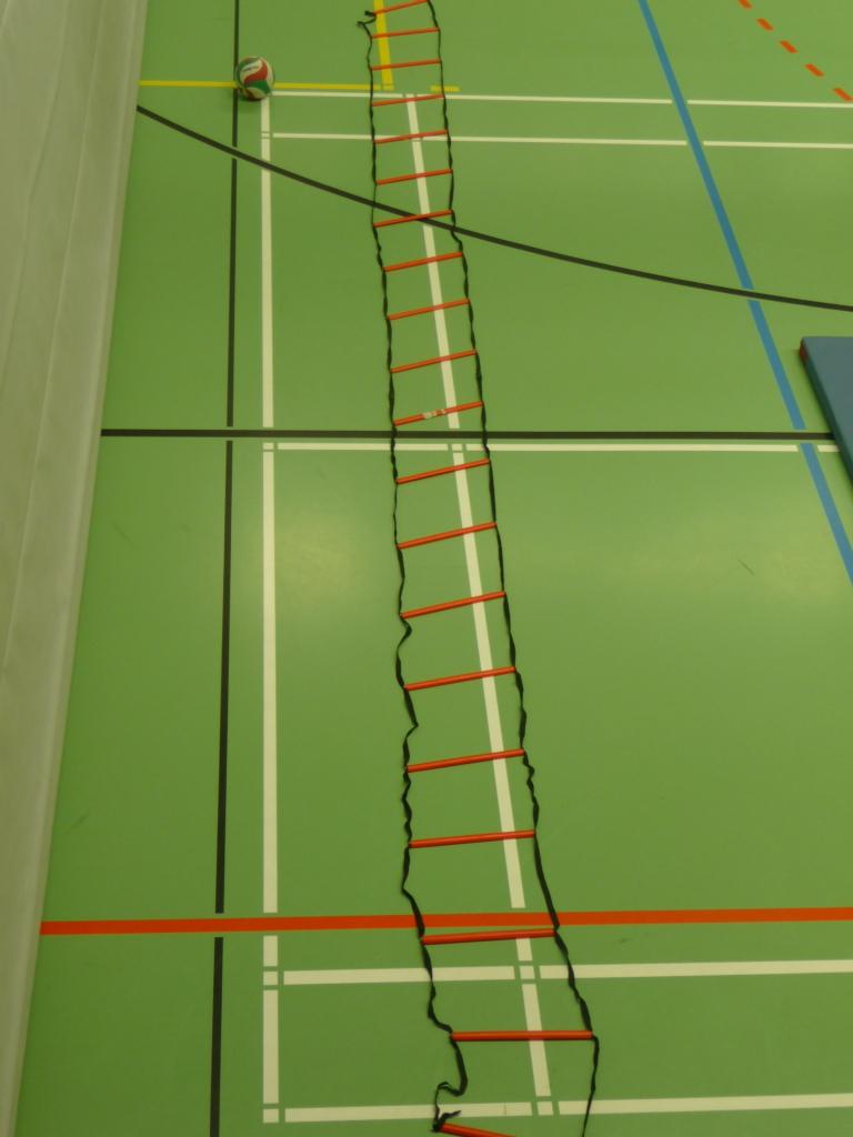 Das Bild zeigt eine schwarz-rote Koordinationsleiter, welche ausgebreitet auf dem Hallenboden in einer Sporthalle liegt.