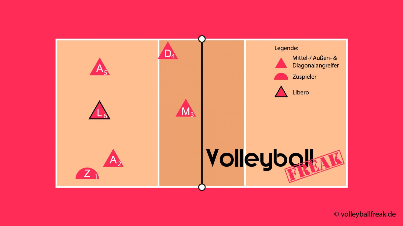 Volleyball Laufersystem Mit 1 Steller