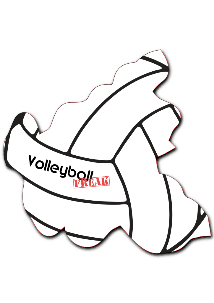 Das Bild zeigt die Umrisse von Hamburg. In der Fläche von des Landes sind die Umrisse eines Volleyballs zu sehen. Desweiteren ist in der Mitte das Logo von VolleyballFREAK