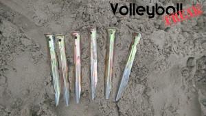 Das Bild zeigt 6 Sandheringe am Strand der Nordsee!