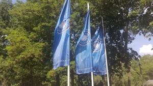 Das Foto zeigt die Fahnen der Volleyball-Bundesliga.