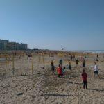 Beachline Festival 2017 – Beachfelder soweit das Auge reicht