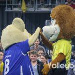 Das Schweriner und Stuttgarter Maskottchen mit einem High Five.